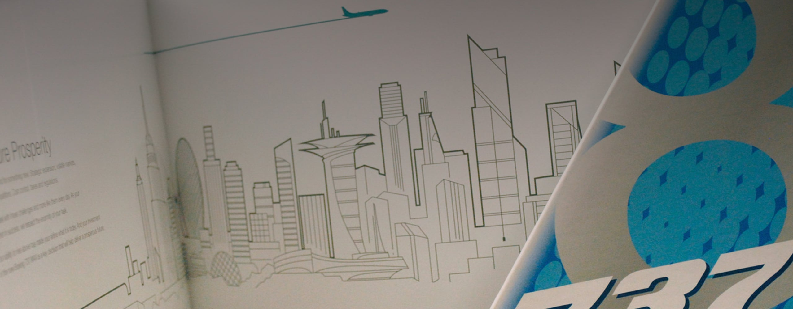 Banner for Boeing 737 Max Look Book