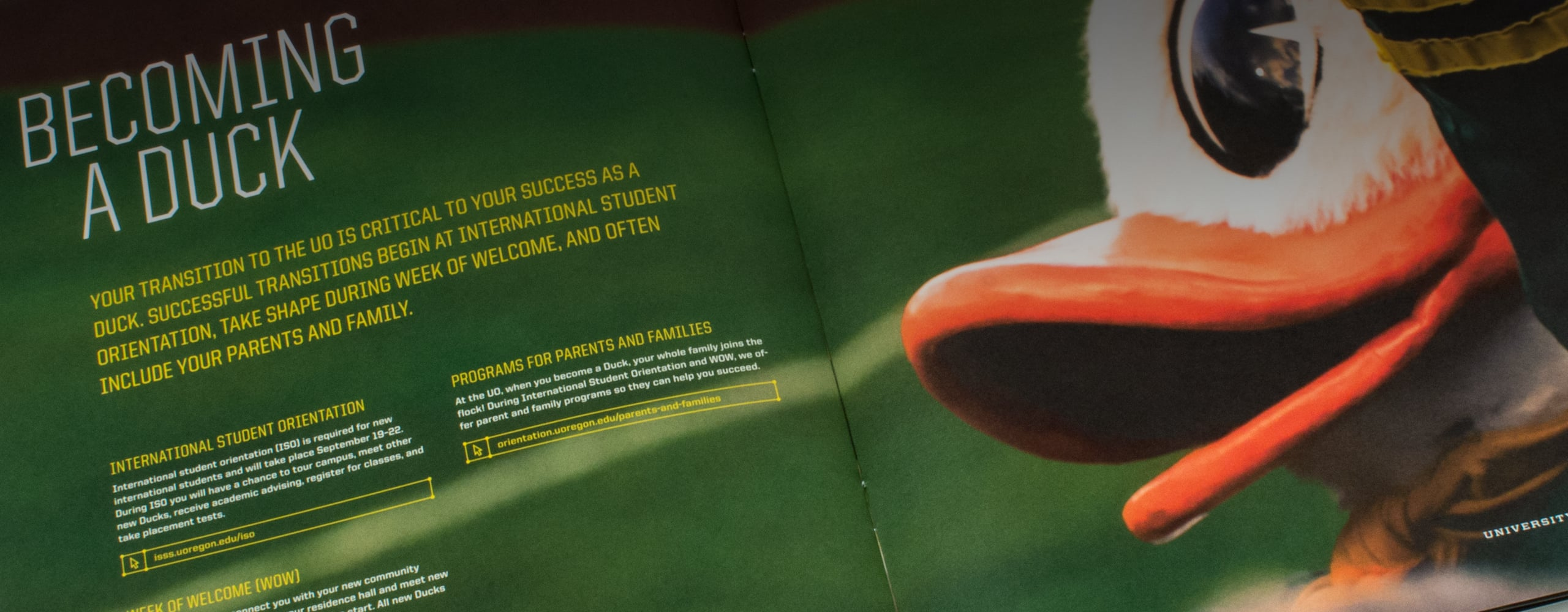 Banner for University of Oregon Recruiting Campaign
